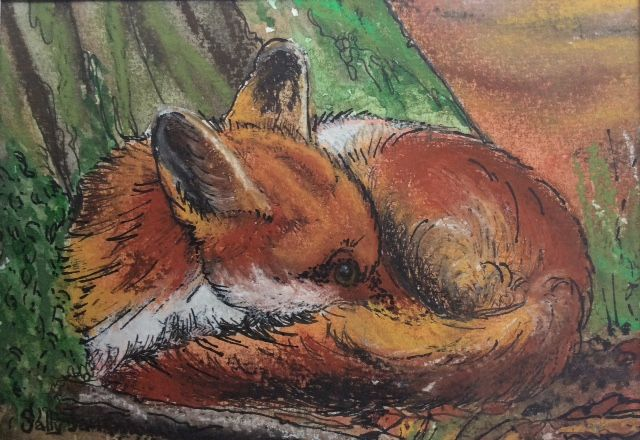 Sleepy fox